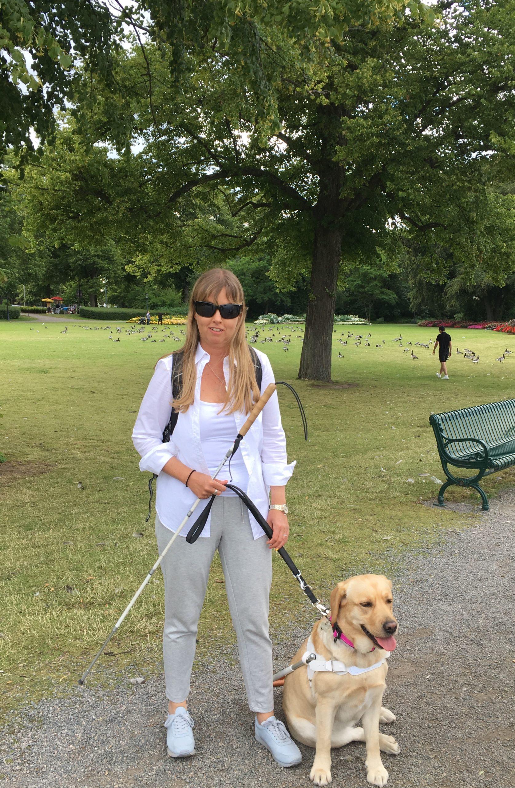 Jag promenrandes med min ledarhund, en ljus labrador iklädd vit sele. I bakgrunden syns en stor park och ett stort träd. På marken går cirka 100 fåglar bakom trädet. Jag har på mig solglasögon, en vit uppknäppt skjorta ovanpå ett vitt linne, ljusgrå byxor och ljusgrå skor samt en svart ryggsäck.